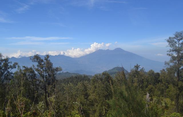 Pemandangan Arjuno Welirang di trek Pendakian Butak