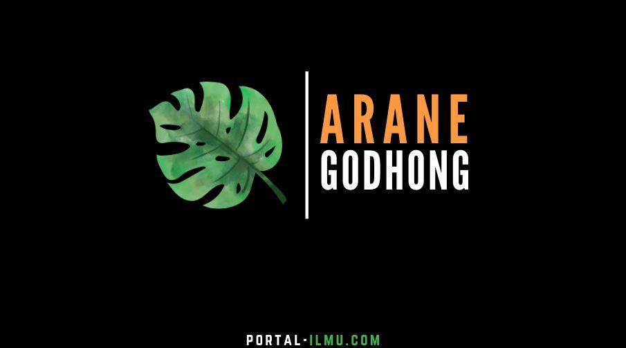 Arane Godhong