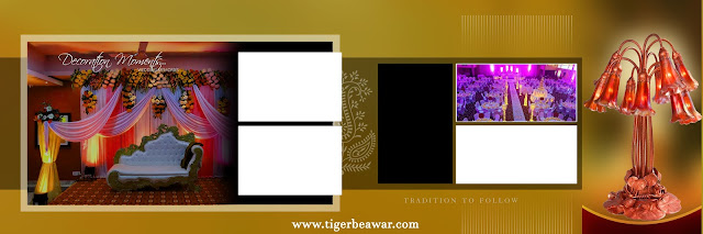 Indian 2020 Karizma Album Design 12x36 Psd