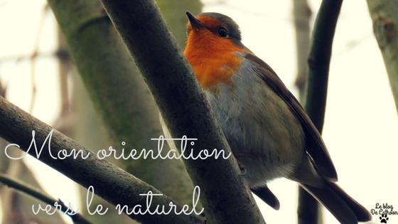 Comment remplacer ses produits cosmétiques en produits naturels et bio