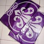 Bendera WOSM Bahan Satin