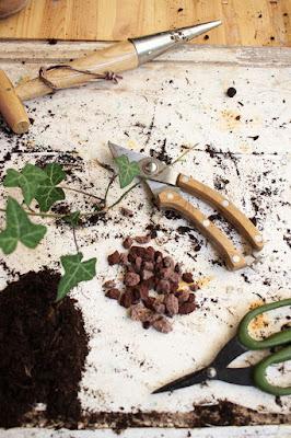 Matériel de jardinage en bois, pouzzolane, lierre, ciseaux, jardin