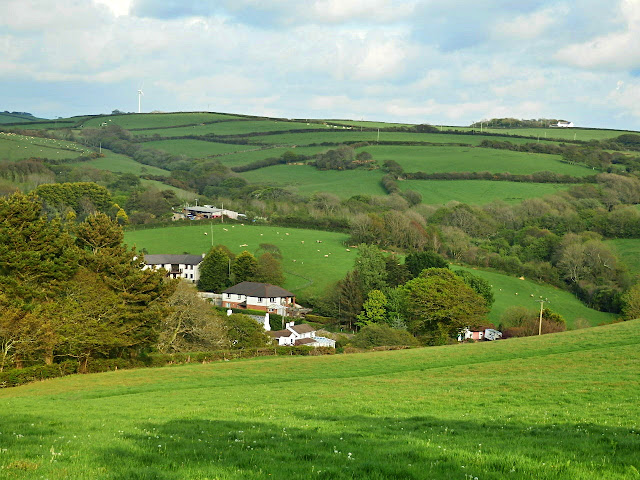 Green fields of Cornwall