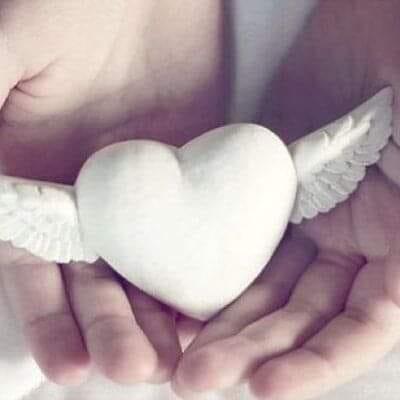 العطار تلقي الضوء على القلب الأبيض