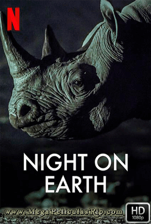 Night On Earth [1080p] [Latino-Ingles] [MEGA]