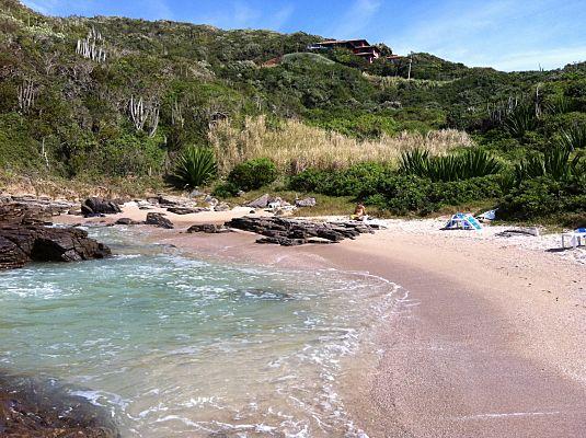 praia foca buzios