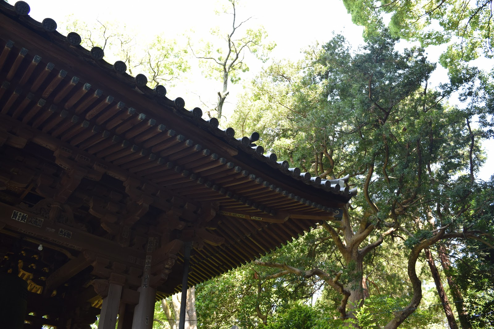 Temple roof in Kiyomizudera Shizuoka city