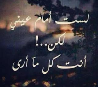 كلمات معبرة عن الحب
