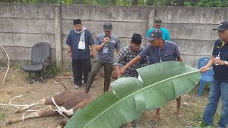 RibuanKupon Daging QurbanBankJambiDibagikanPadaFakirMiskin Pada Masyarakat Kota Jambi.