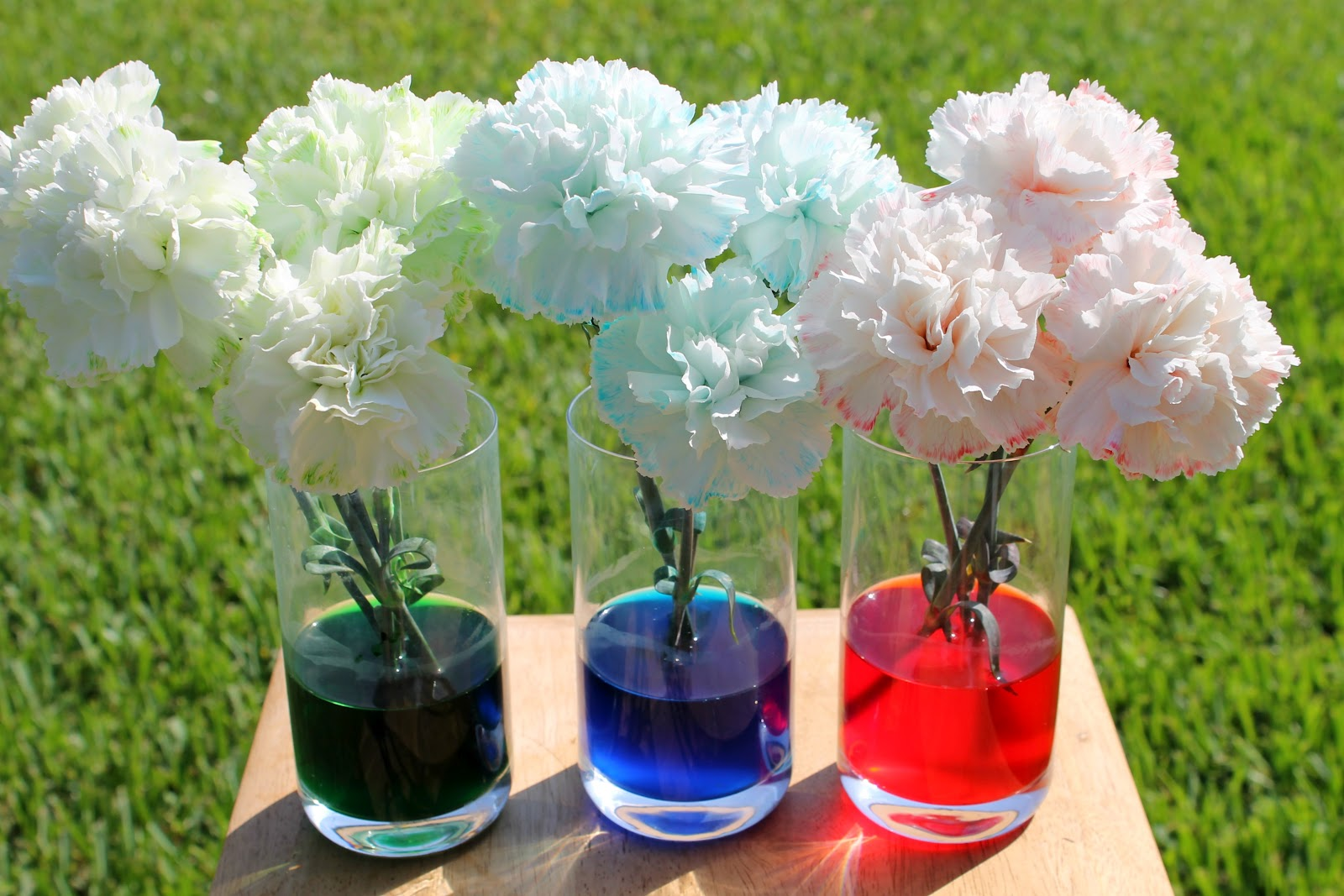 How To Make Food Coloring