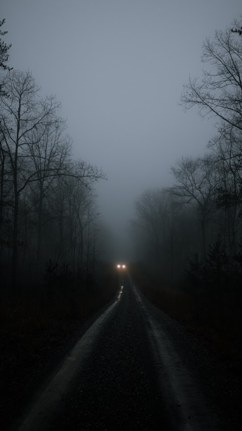 Ánh đèn ôtô