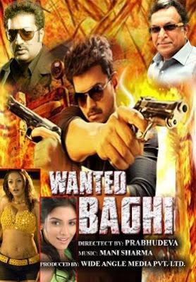 Wanted Bhagi 2015 hindi dubbed watch full movie