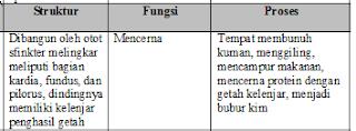Jawaban b No 3 Asesment Biologi SMA Latihan (UN) Program IPA (Bagian 2)