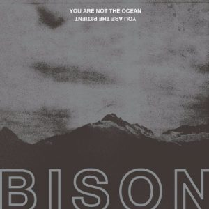 "BISON : ""You Are Not The Ocean You Are The Patient"" 2017"