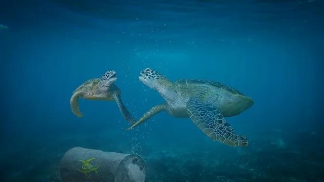 بحث عن التلوث البحري : أنواعه ومصادره doc