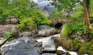 Dog Friendly Walks Betws-y-Coed