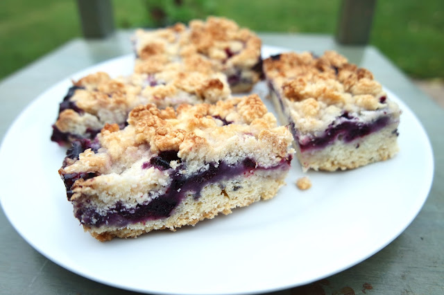 Blueberry Crumble Slices