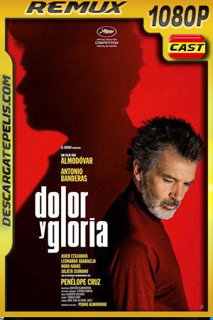 Dolor y gloria (2019) 1080p BDRemux Castellano