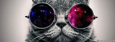 صور حلوة لغلاف فيس قطة مضحكة