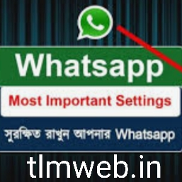 about most important whatsapp settings