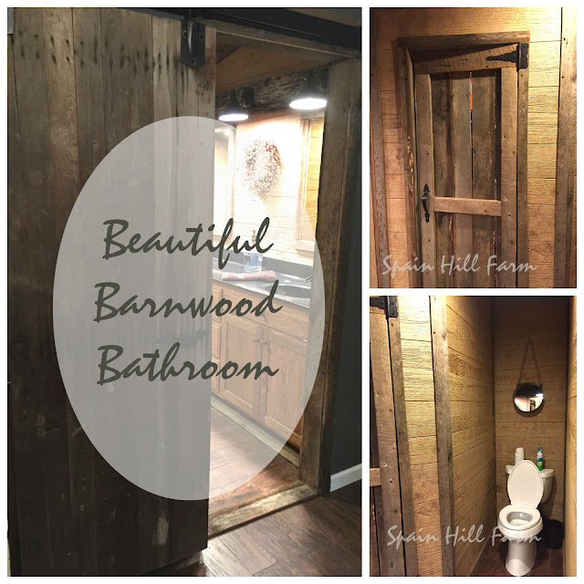 Beautiful DIY Barnwood Bathroom with Reclaimed Barn Wood Door