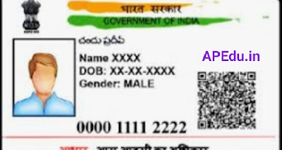 Aadhaar cards for everyone at home on the same mobile number