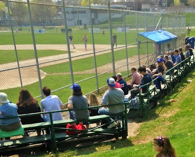 bleachers at christie pits, toronto maple leafs baseball crowd