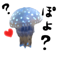 Pink Jellyfish and friends sticker