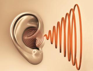 Pengobatan untuk tinnitus