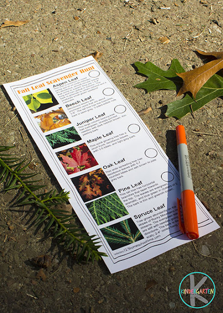 fall scavenger hunt for kids, fall science project