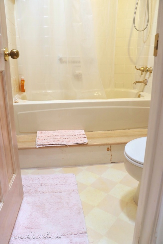 French Finesse Bathroom Renovation Before