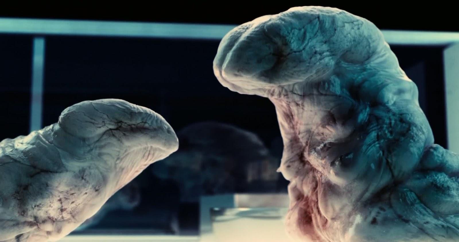 A Cosmobiologist's Dream: The Modular Body