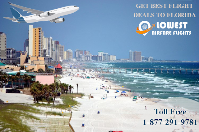 Flight Deals to Florida