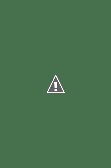 Beauty parlor business plan