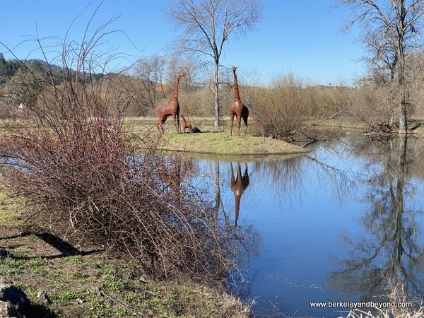 metal giraffe sculptures at Deerfield Ranch Winery in Kenwood, California