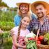 Guajeru: Secretaria de Agricultura abre inscrições para o cadastro de produtores no PAA – Programa de Aquisição de Alimentos