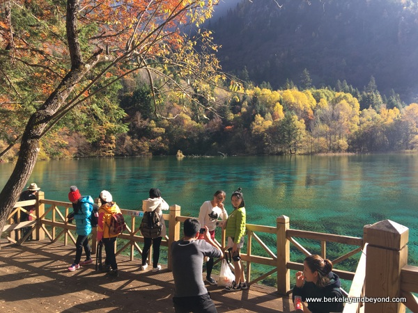 Five Flower Lake in Jiuzhaigou Valley National Park in Sichuan Province, China