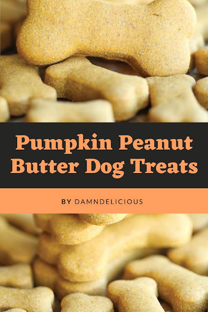 Healthy Pumpkin Peanut Butter Dog Treats