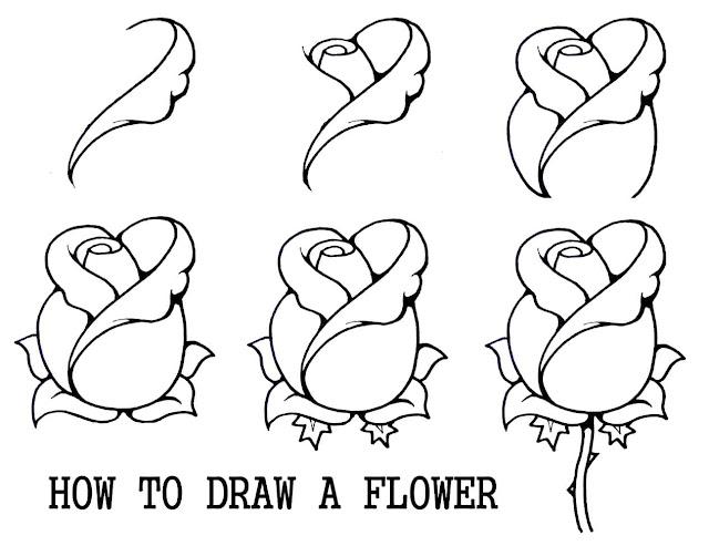رسومات جميلة بالرصاص لمراحل رسم وردة