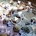 SHOCKING! The Evidence of CPP-NPA Extra Judicial Killings