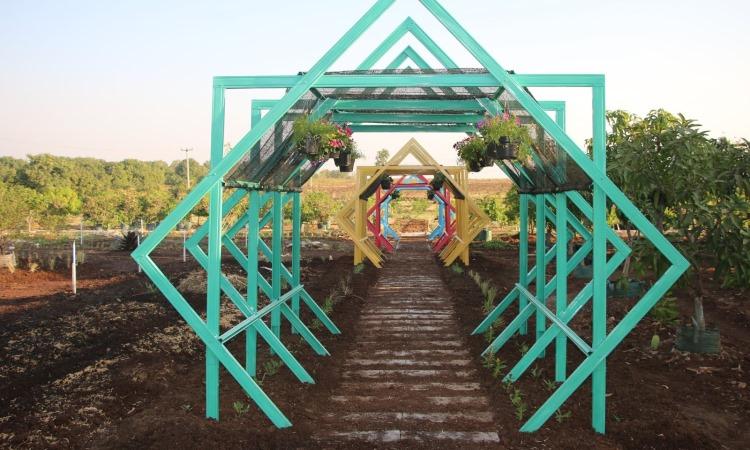 Agrowisata Situ Bolang, Tempat Wisata Kekinian di Indramayu