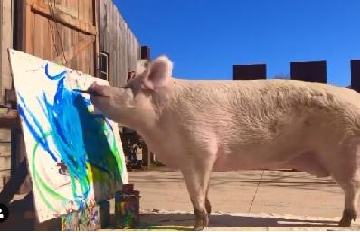 पिग्कासो पेंटिंग कैसे बनाता है