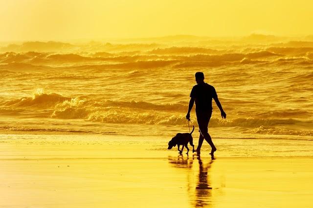 8 فوائد صحية للمشي لمسافات طويلة