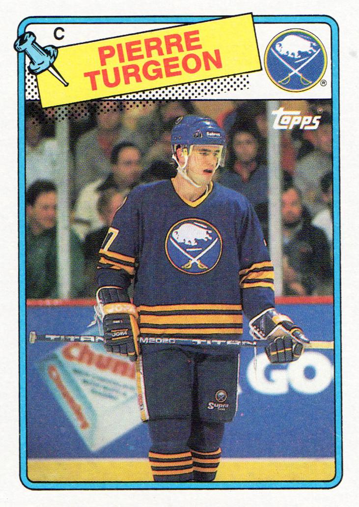 https://ninepockets.blogspot.com/2020/10/completed-set-1988-89-topps-hockey.html