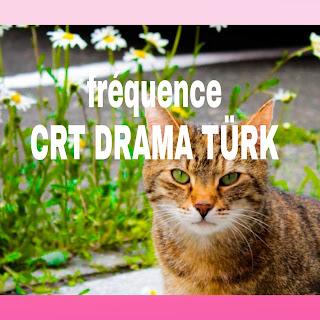 Fréquences CRT DRAMA pour regarder séries dramatiques turques et arabes 2021