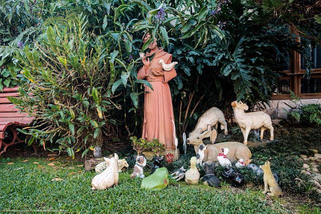 Estátua de São Brancisco rodeado e animais