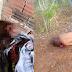 Polícia registra dois homicídios em Araci, na Microrregião de Serrinha