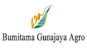 Lowongan Kerja D4/S1 di PT Bumitama Gunajaya Agro (BGA) Juni 2021