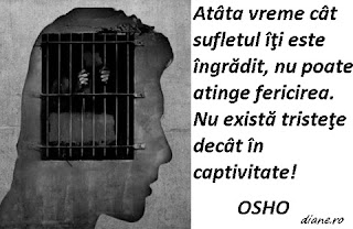Singurul punct slab al palatului - Poveste de Osho