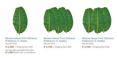 peluang export daun pisang